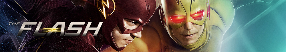 banner of The Flash